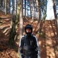 DwoC steht im Wald