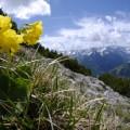 Frühling auf den Bergen