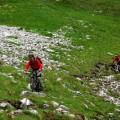 gefinkelte Trails Wiese mit Steinen