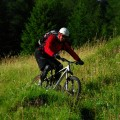 jetzt noch durch grüne Almwiesen...