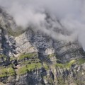 schon wieder Nebel :-(