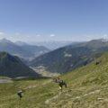 Ausblick nach Innsbruck.